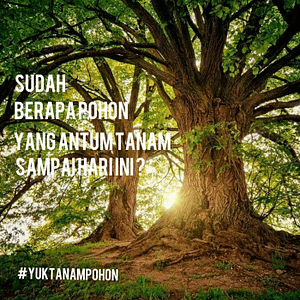 Yuk menanam pohon